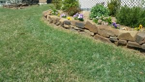 Professional Dandelion, Crabgrass & Nut Grass Weed Killer & Control Services in Eufala OK