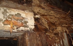 Help Protect Your Tulsa, OK House from Termites, Mold, Mildew with Foundation Ventilation & Moisture Control