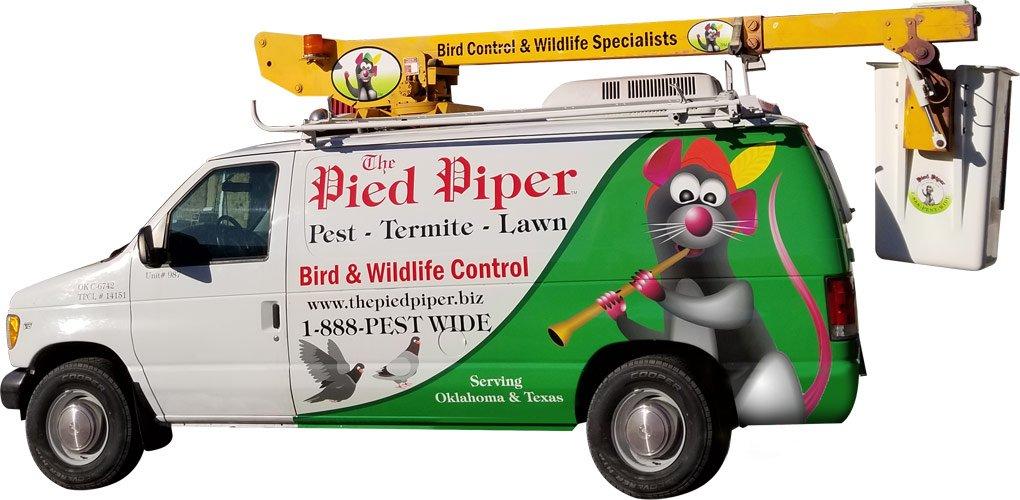 Pied Piper Van