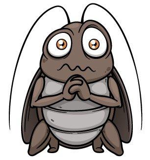 Sad cockroach