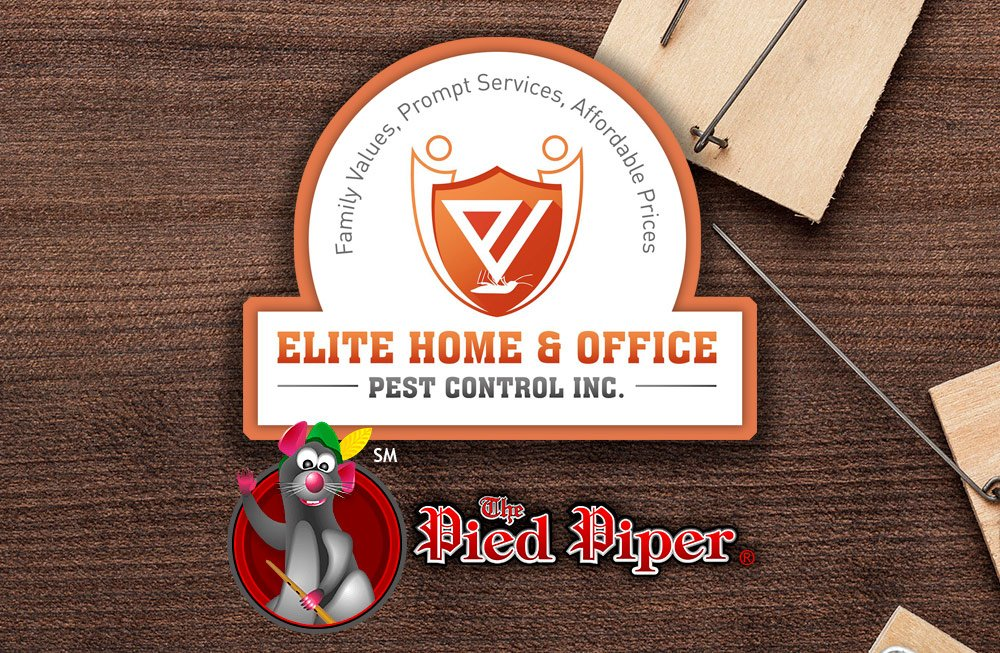 Elite Home and Office is now The Pied Piper