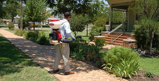 Pest control Technician Completing Mosquito Control Service