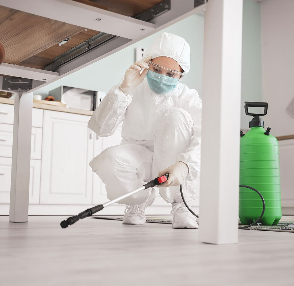 Worker in biohazard suit disinfecting house