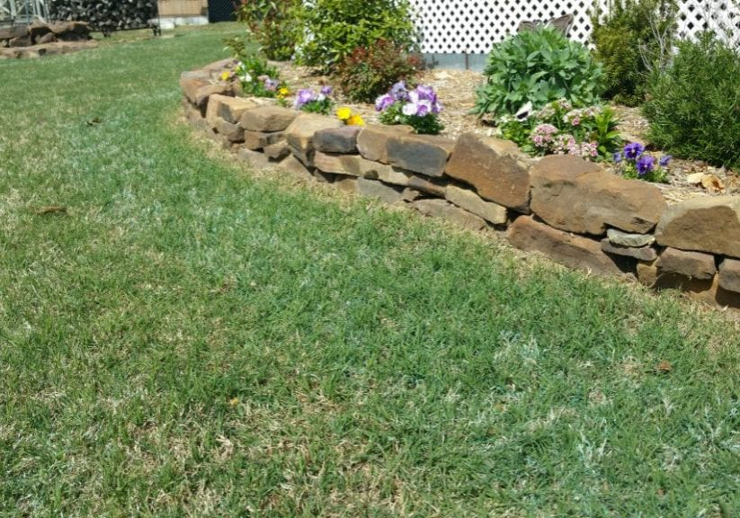 Tips on Garden Dandelion, Crabgrass & Nutsedge Weed Control